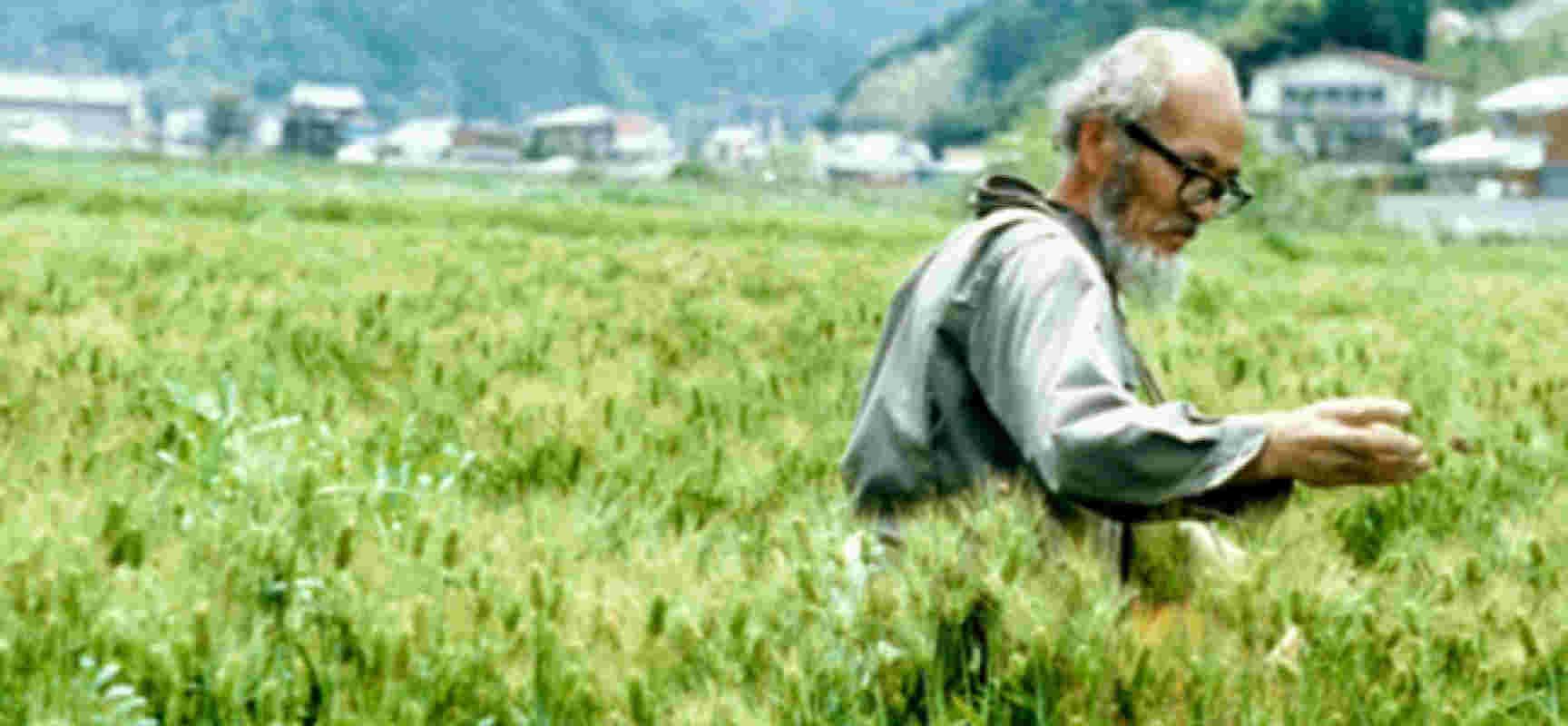 masanobu-fukuoka