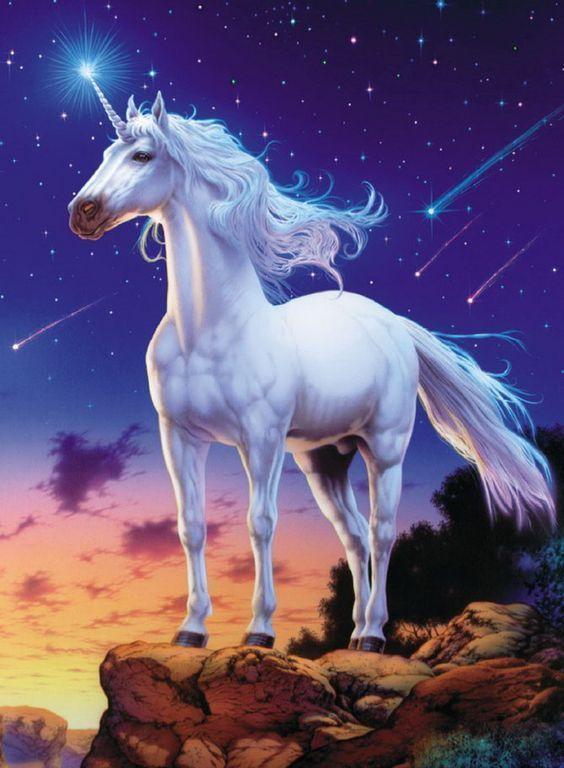 Nacio un unicornio en Tailandia -By Maru.